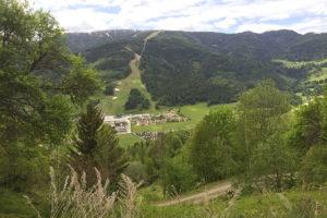 susannebrunner-sommer-ausblick