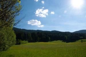 susannebrunner-sommer-ausblick2