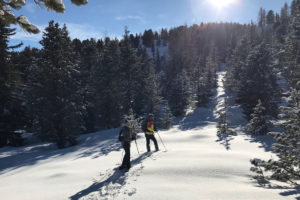 Kreischberg Winter Foto:Susanne Brunner