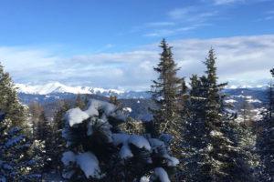 susannebrunner-winter6